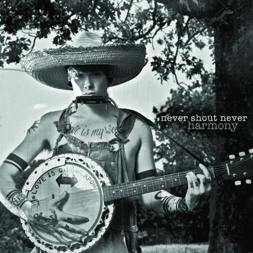 hawthorne heights the silence in black and white album cover. The cover art for Never Shout